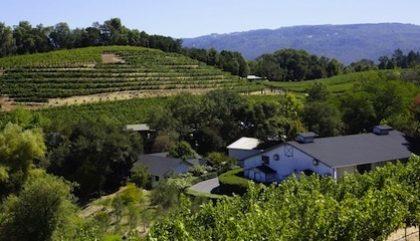 Boire du vin à Sonoma