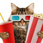 Just For Cats Film Festival