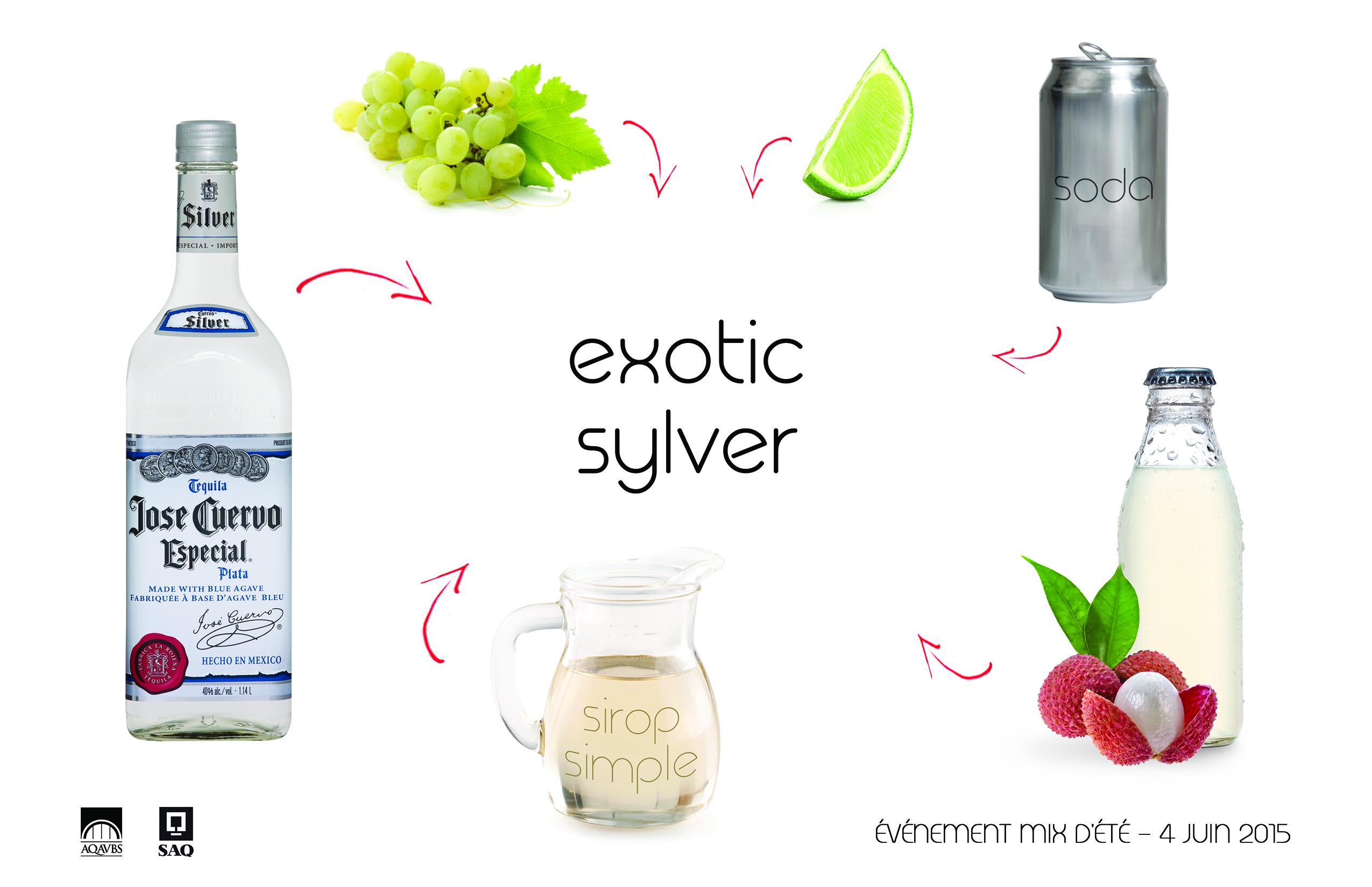 Fiche_recette_Mix_Été_ExoticSylver