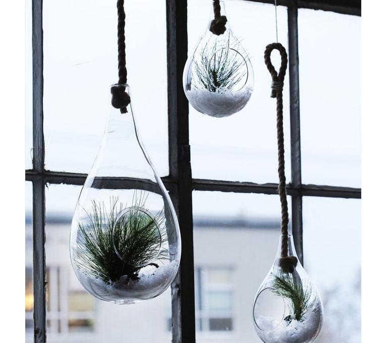 plante, vase, maison, décoration, décos à petits prix