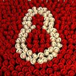 10 façons de célébrer la journée de la femme