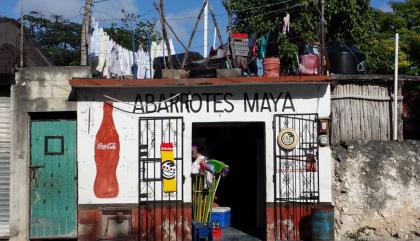 Péninsule du Yucatan et le Chiapas, des régions du Mexique à découvrir