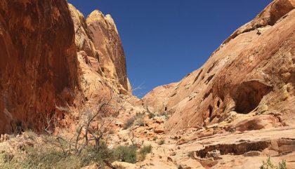 Las Vegas: découvrir la Valley of Fire à pied