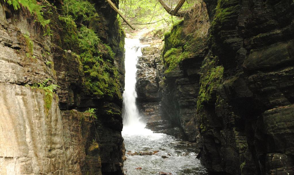 Domaine des chutes du ruisseau, voyage, fun, trip