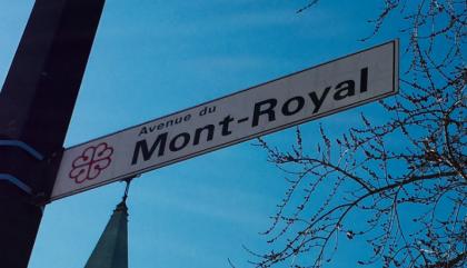 Le Petit Montréalais illustré: la faune et la flore par quartier
