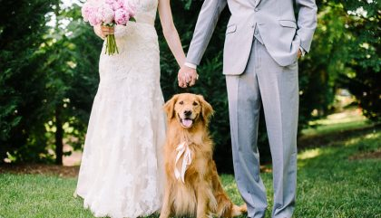 Faire participer son animal de compagnie à son mariage