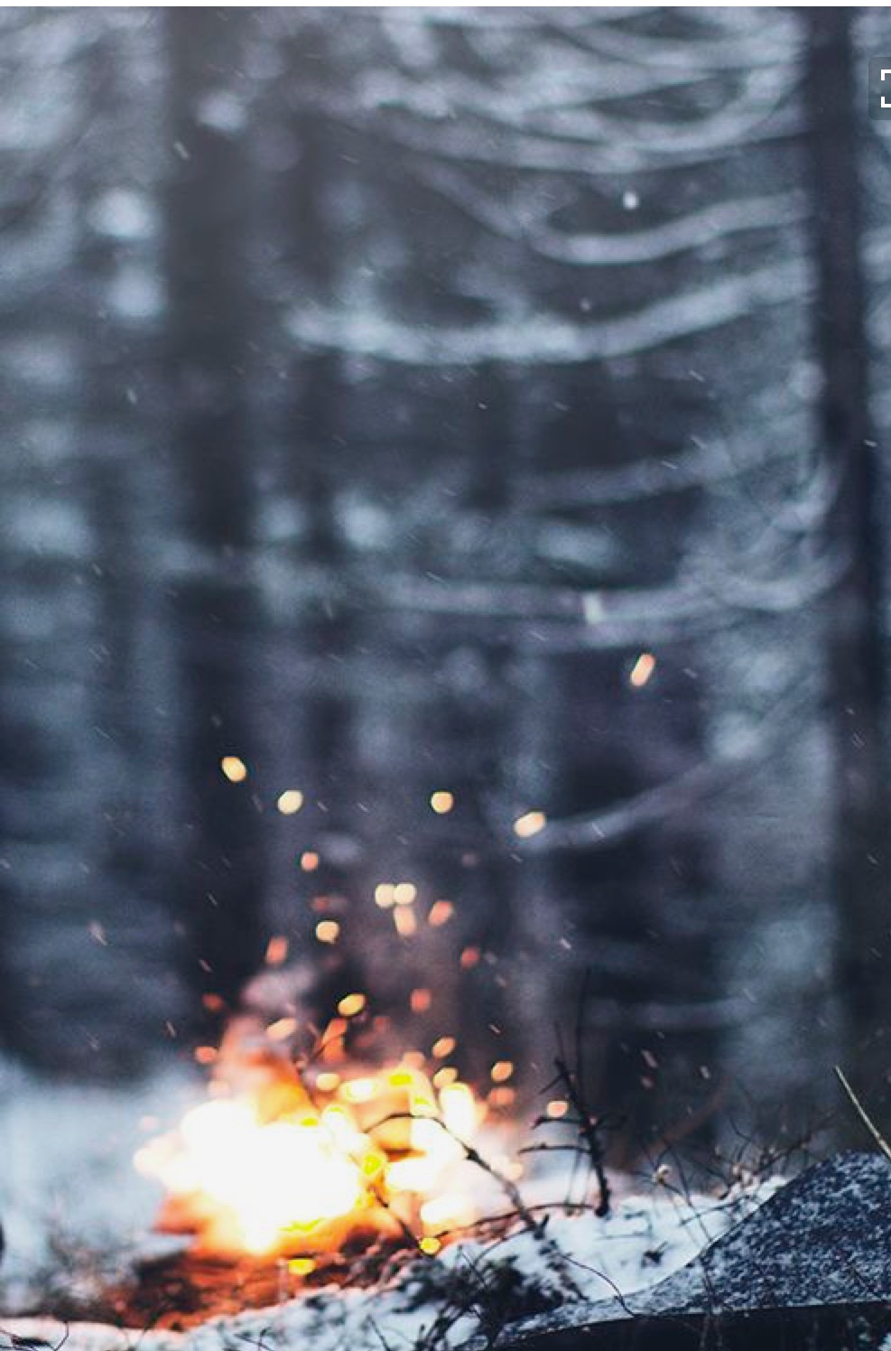 feu, extérieur, hiver