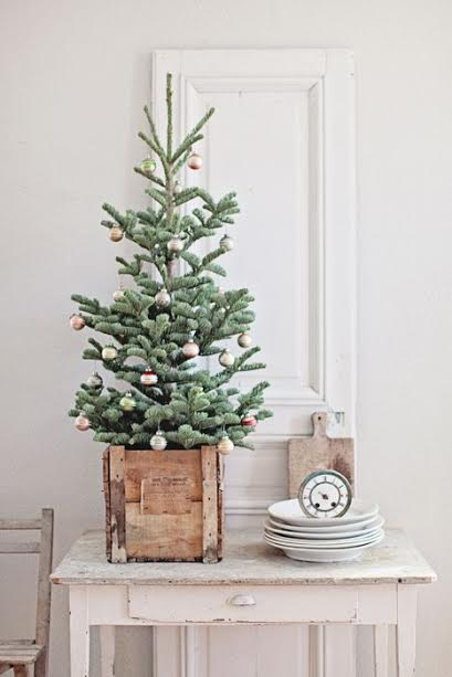 sapin décoration temps des fêtes