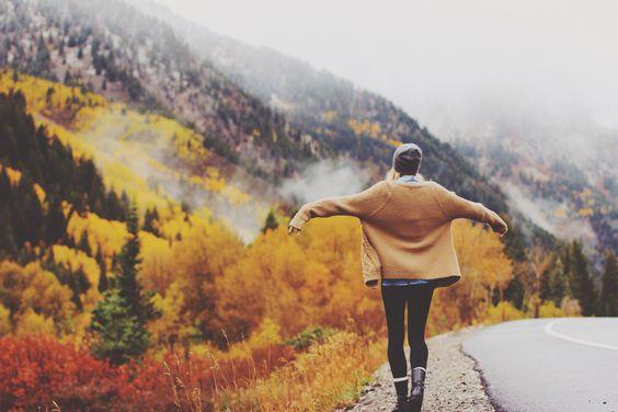 voyage, free, automn, travel