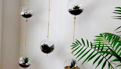 Au fil de la mode version DÉCO : des terrariums DIY