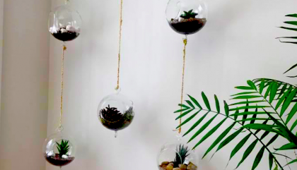 Let's Talk Fashion HOME DECOR Edition: DIY Terrariums