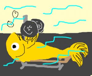 Fish_Gym