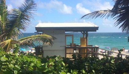 Un roadtrip en Floride, why not coconut?