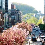 Hommage à la diversité montréalaise