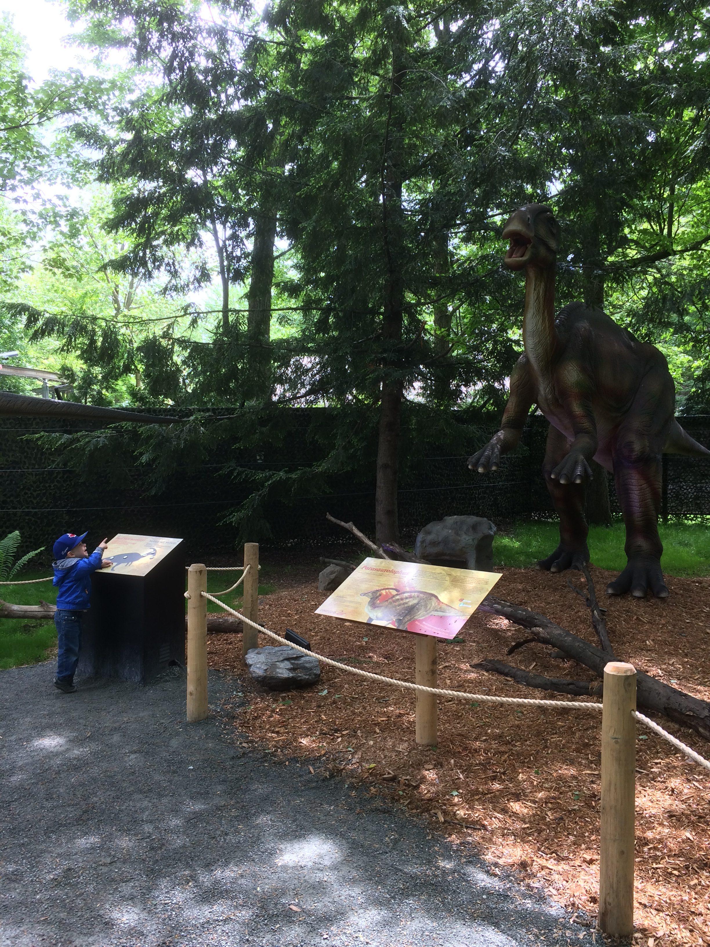 dinozoo, zoo de granby, dinosaure, famille, activité