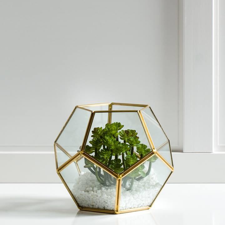 pot, décor, plantes, été