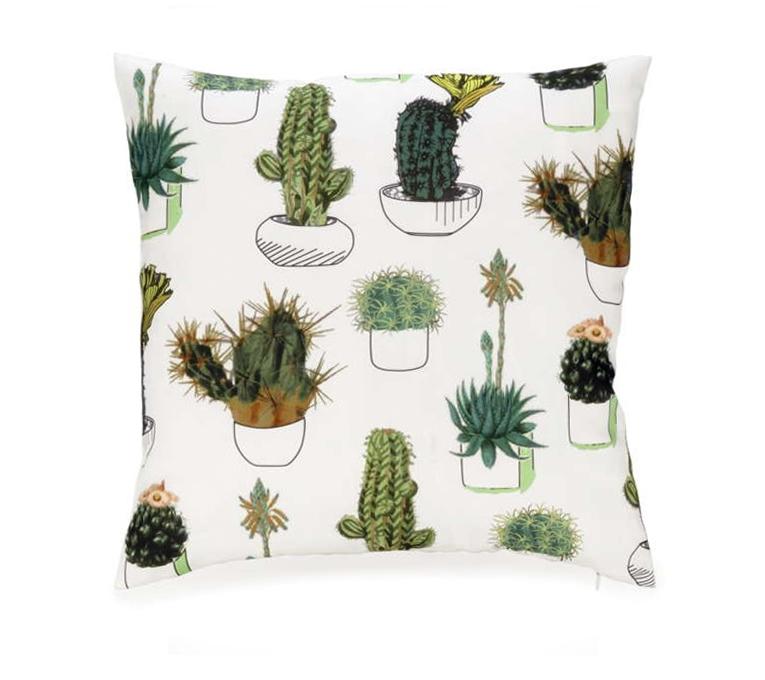 coussin cactus accent v de v