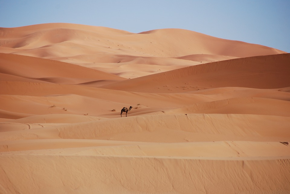maroc, désert, voyage