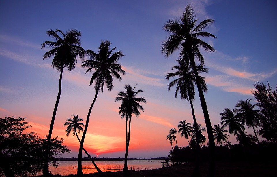 Sri Lanka, Paysage