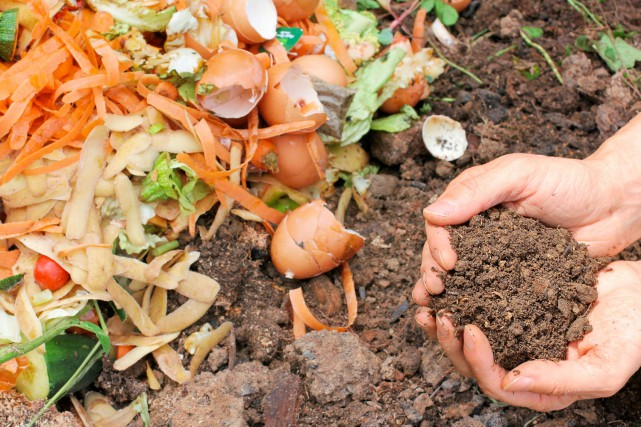 compost environnement compostage ecologie