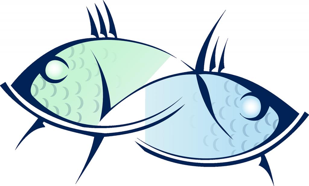 signe astrologique, astrologie, poisson, pisces