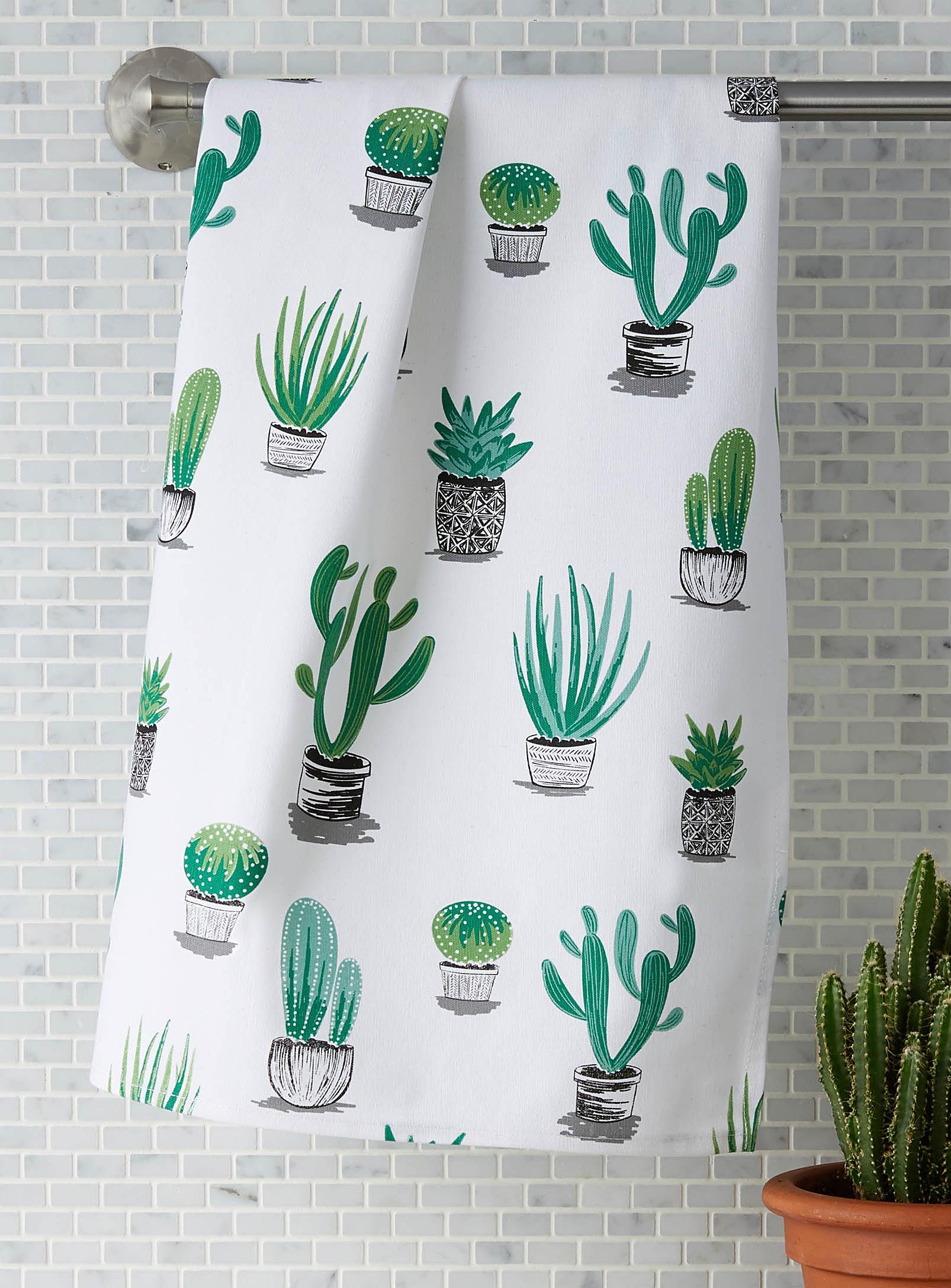 linge, cactus, simons, succulent