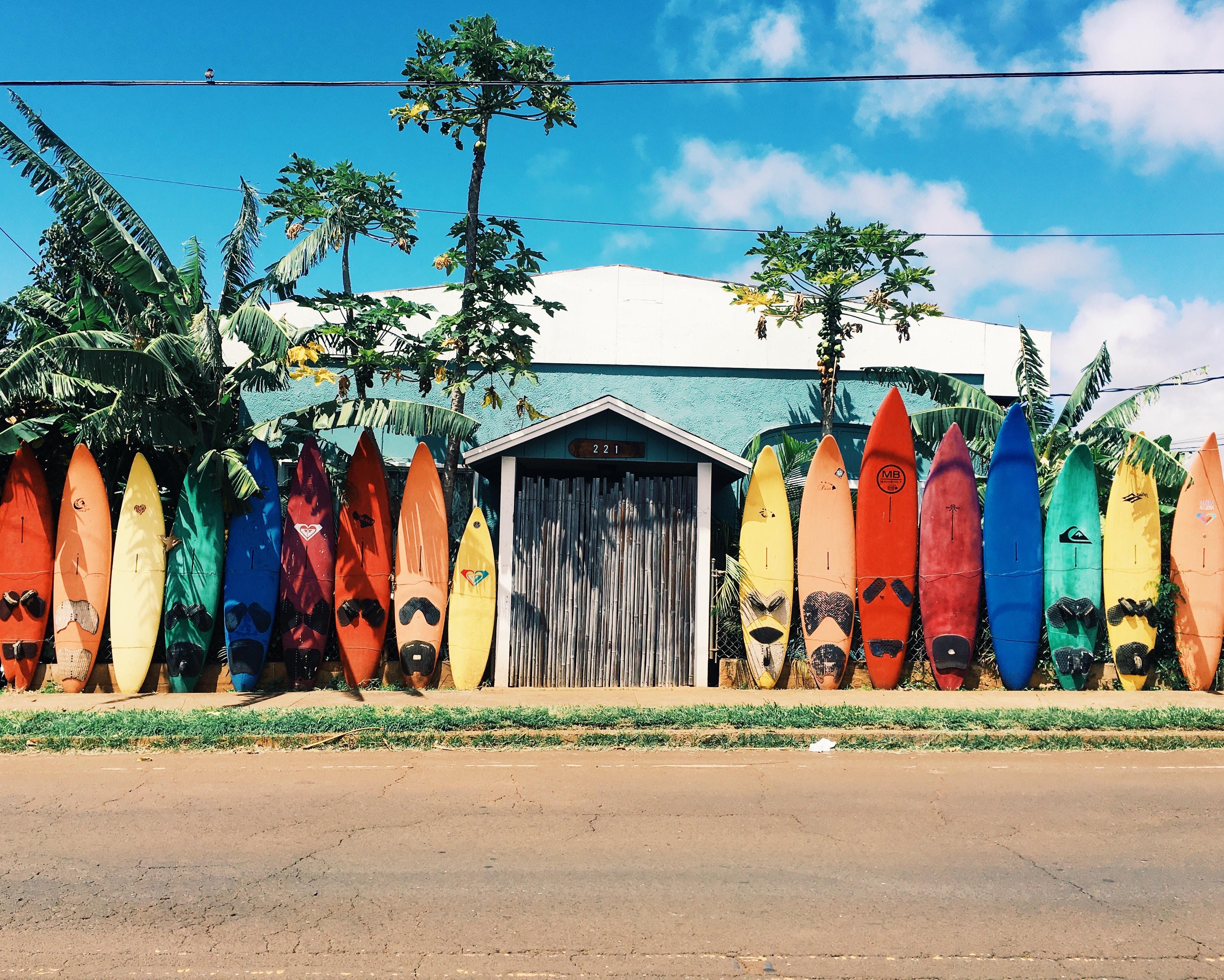 amérique centrale, surf, latine