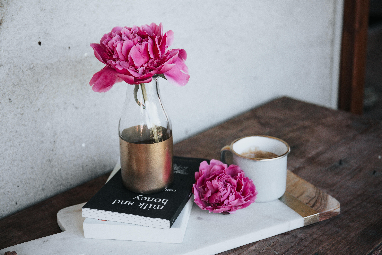 fleur, contraception, confort