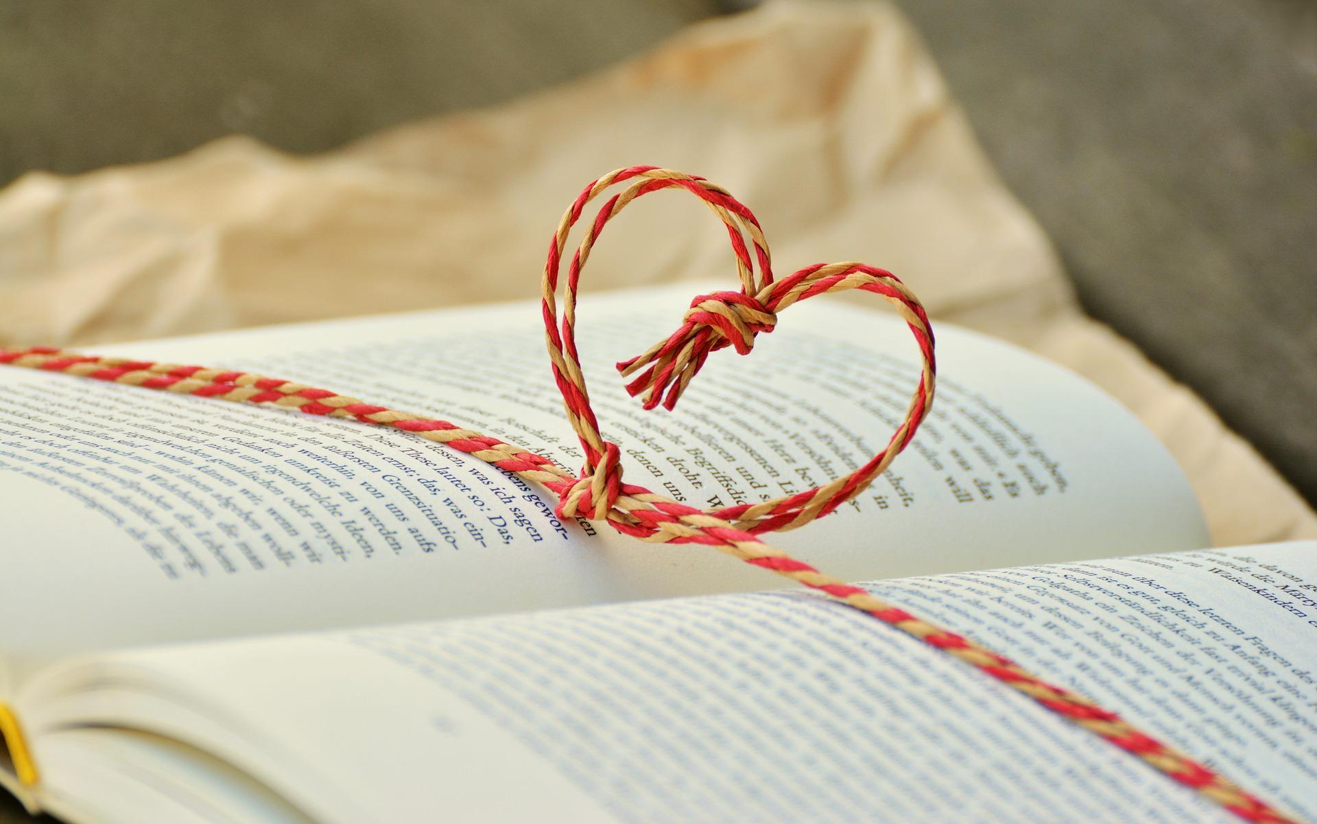 livre, lecture, cadeau, roman