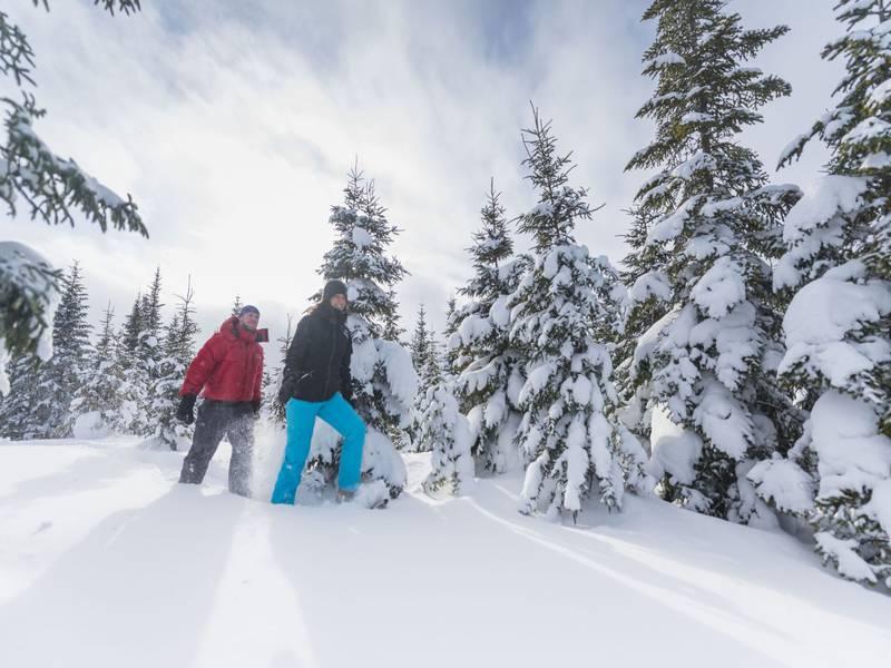 hiver ski fond québec activité mercier