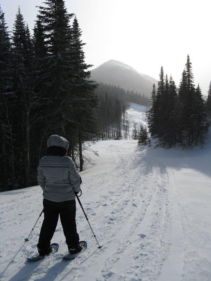 sport hiver randonnée ski dehors plein air activités physiques