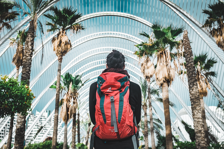 voyage sac à dos palmier