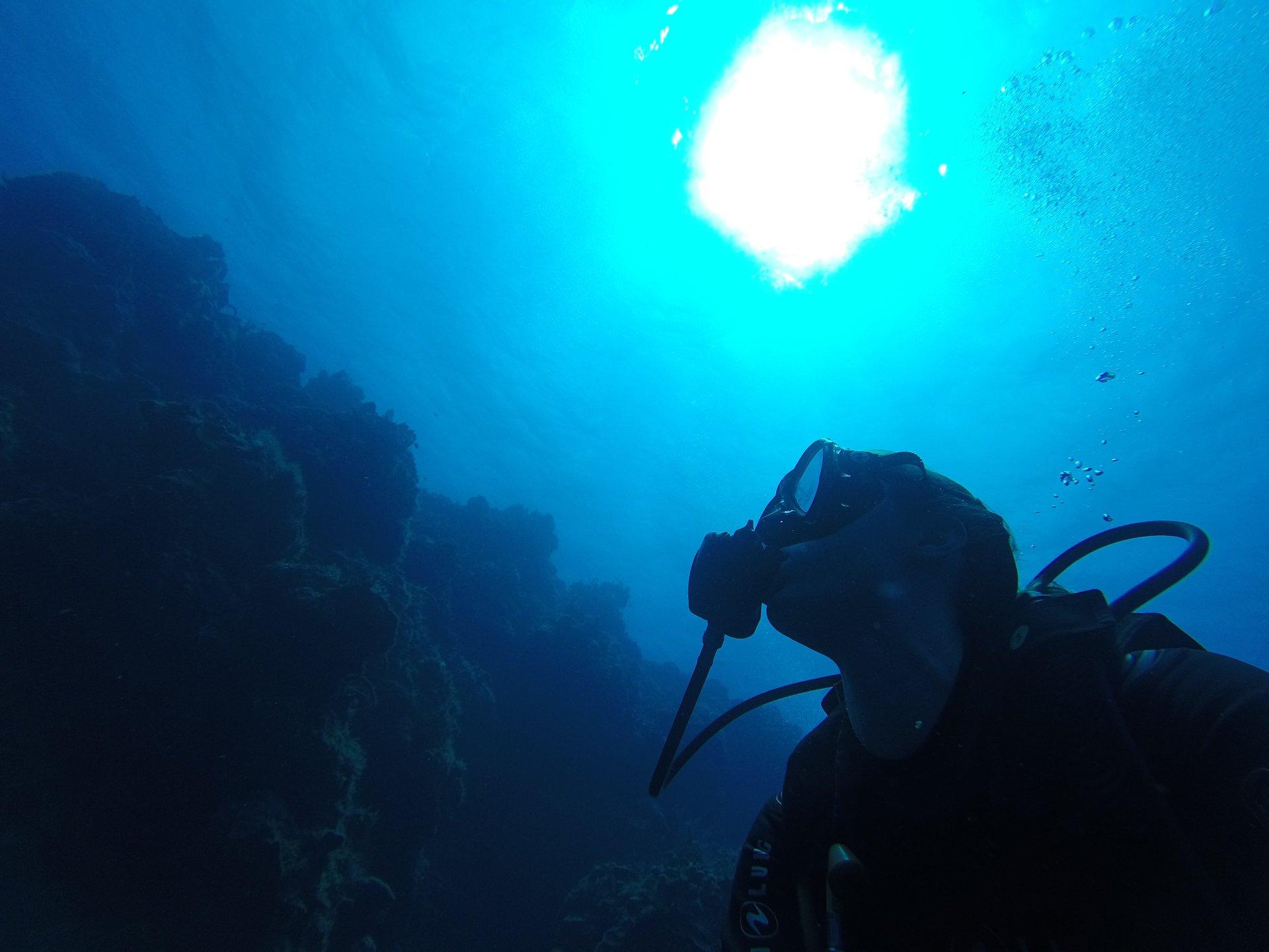 plongée mer