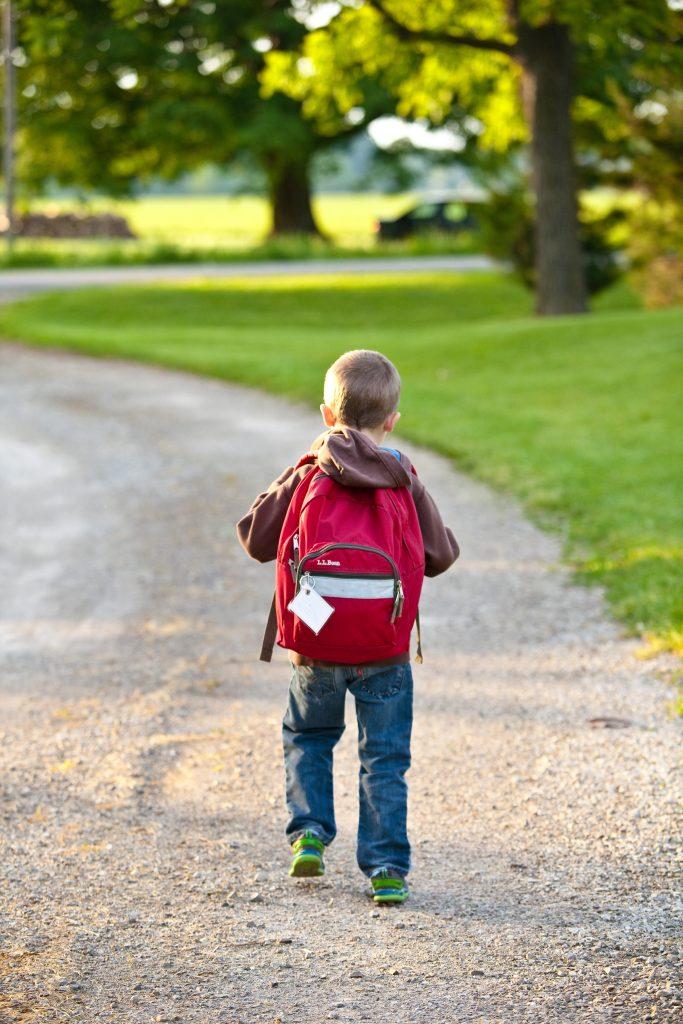 garçon avec sac-à-dos, école, marche, de dos