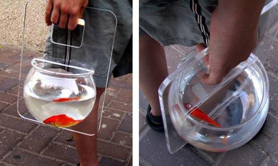 transporteur de poisson rouge