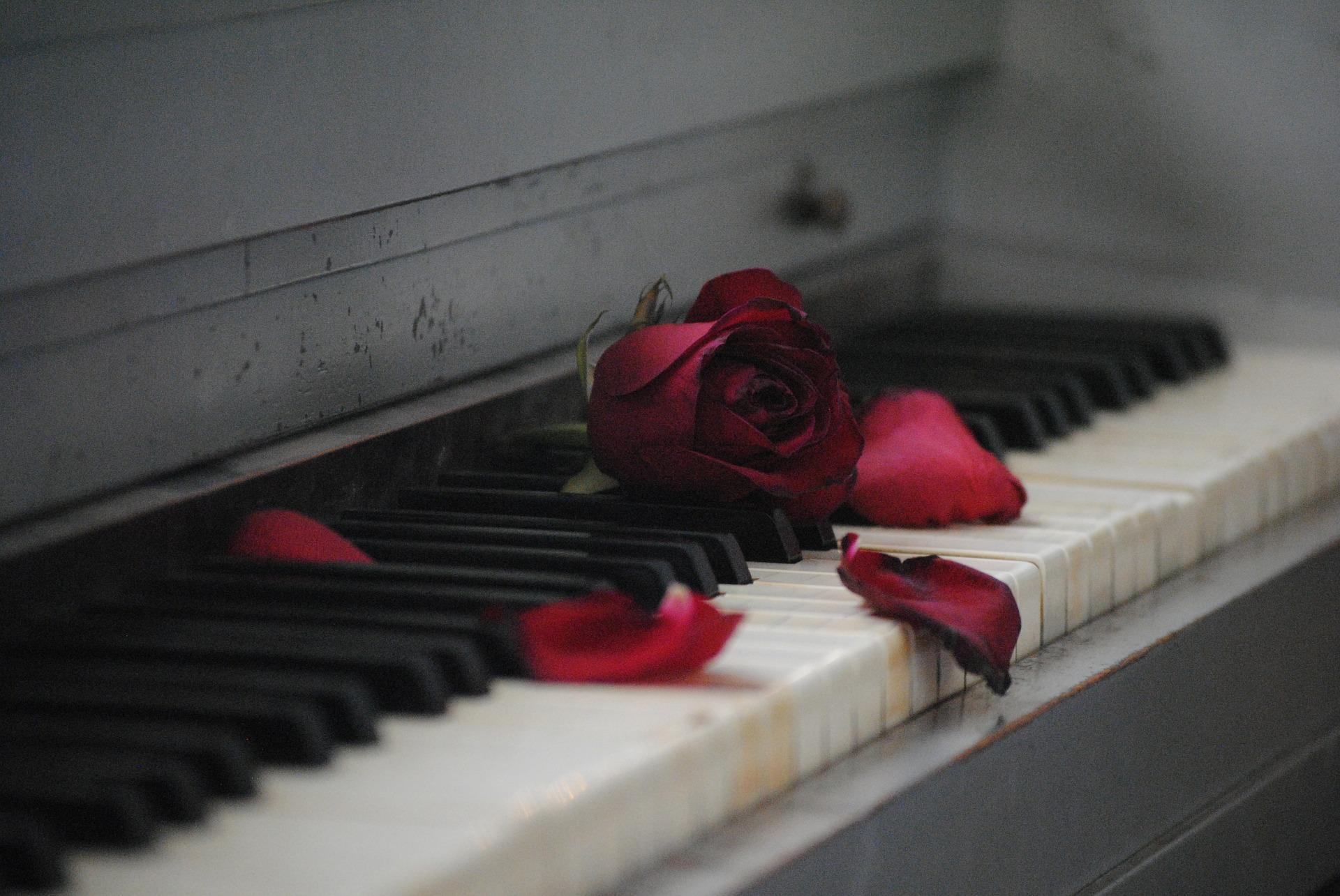 roses piano