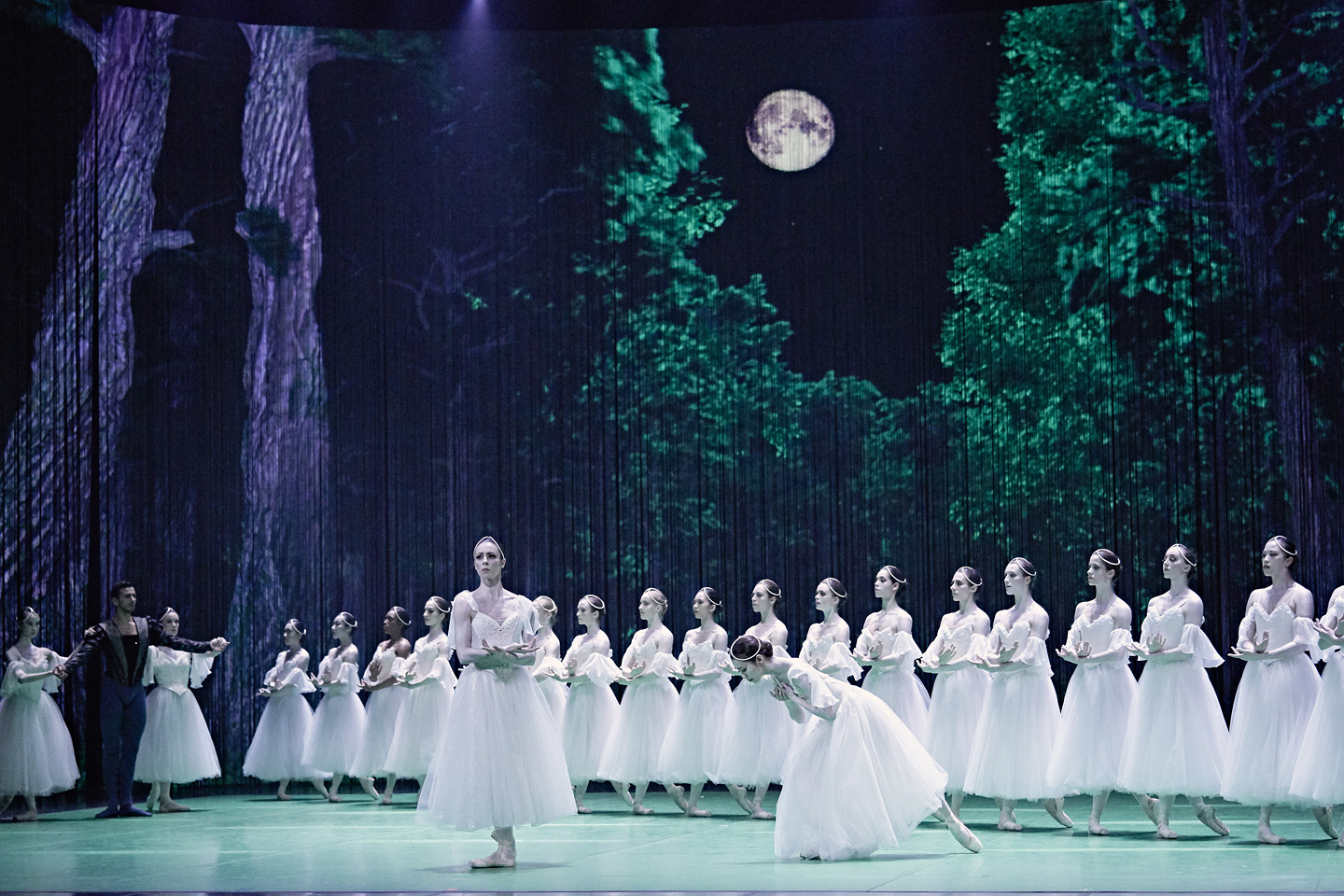 grands ballets giselle