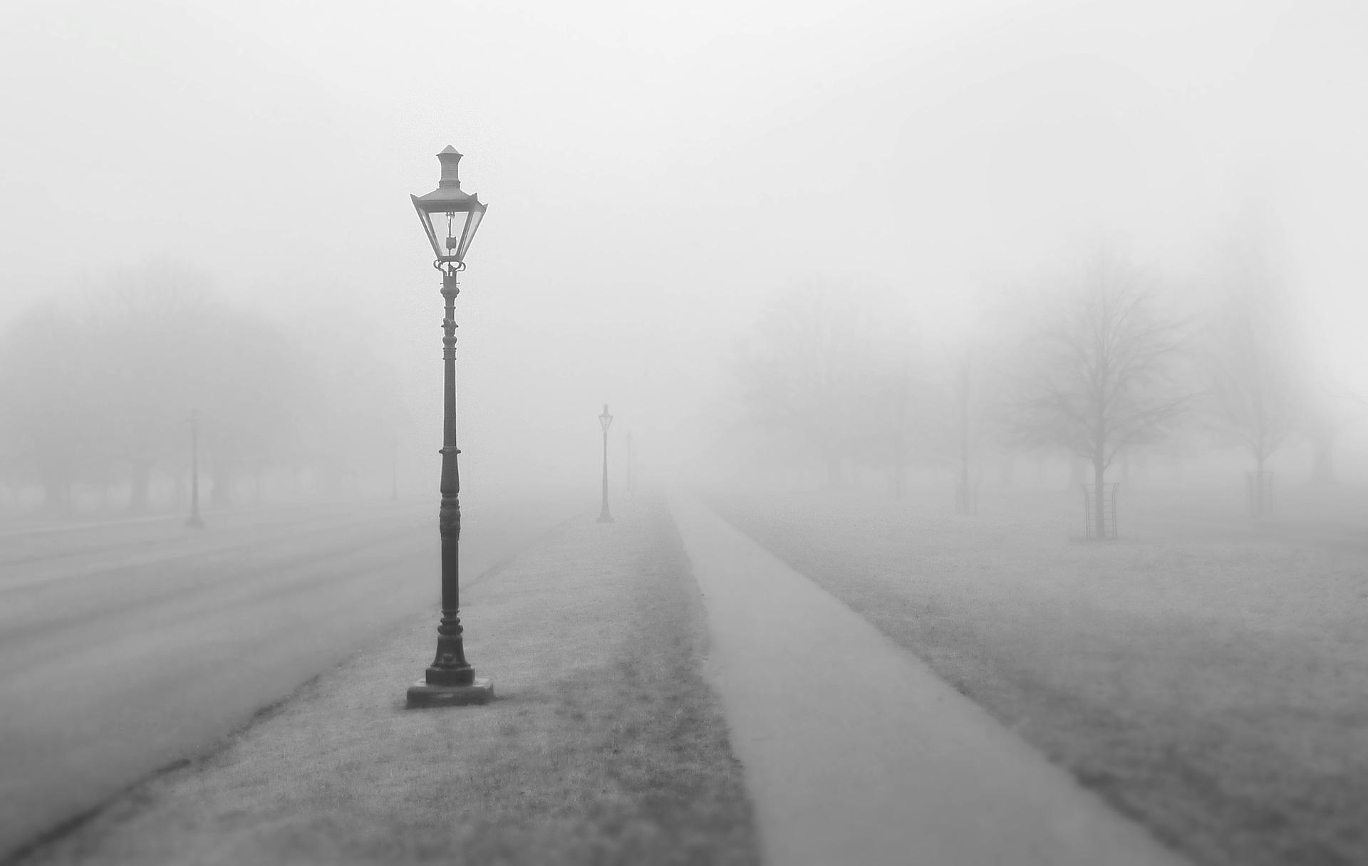 brume chemin lampadaire gris