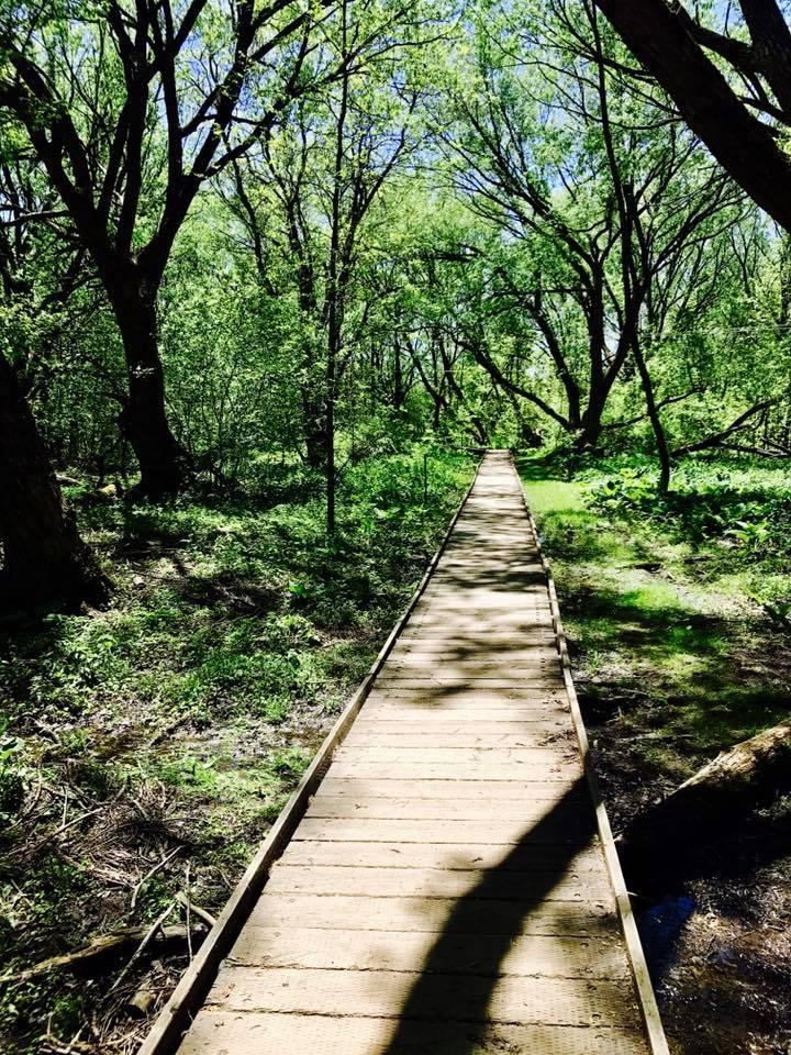 domaine maizerets foret petit pont
