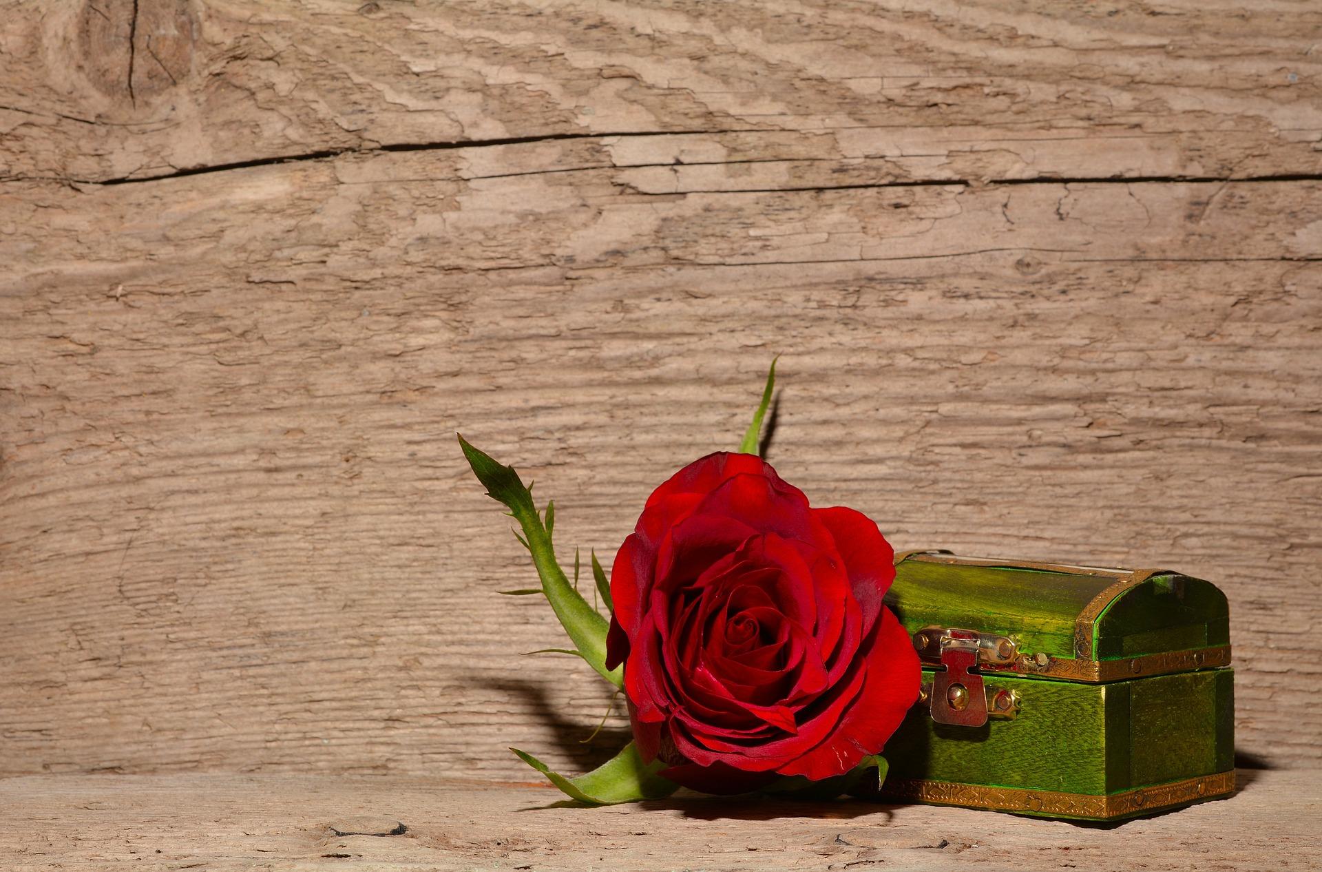 coffret rose bois