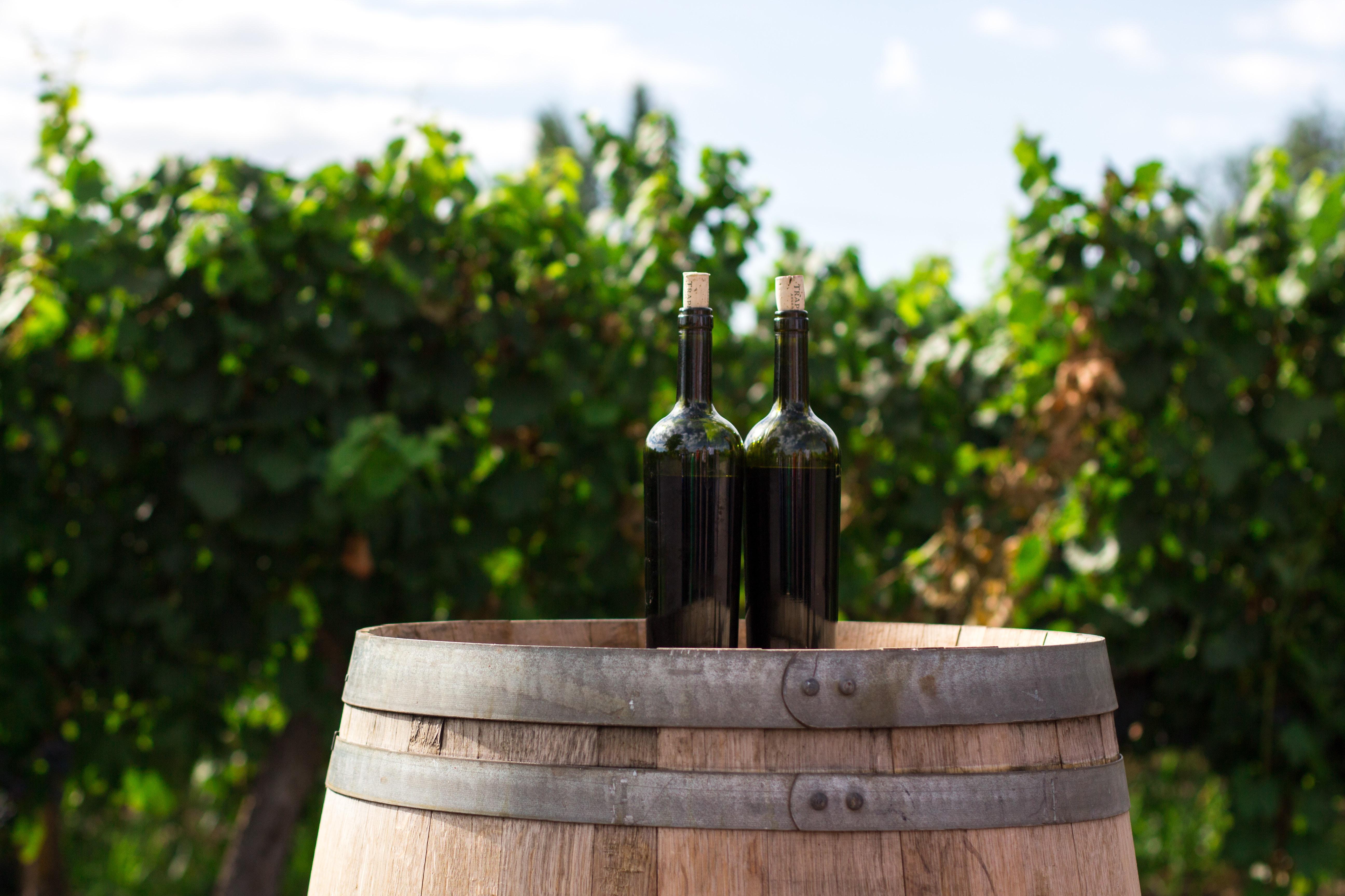 bouteilles de vin baril vignoble