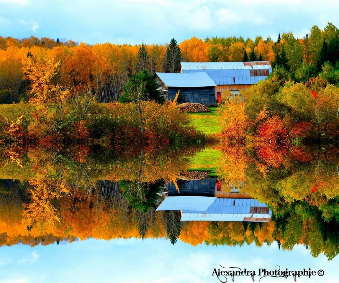 lac campagne chalet arbres