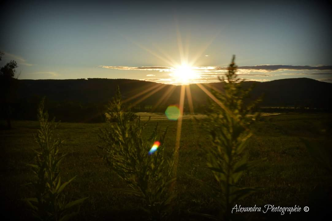 campagne coucher de soleilcampagne coucher de soleil