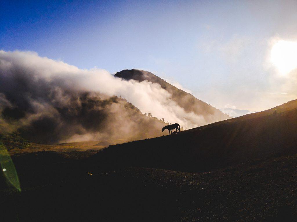 camille dg voyage guatemala cheval montagne