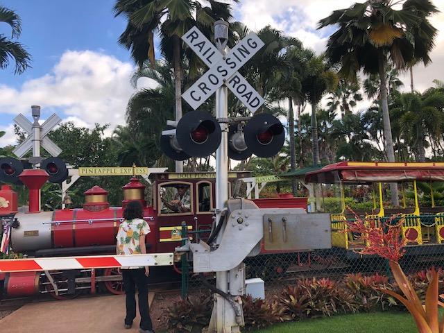 train qui passe pineapple express
