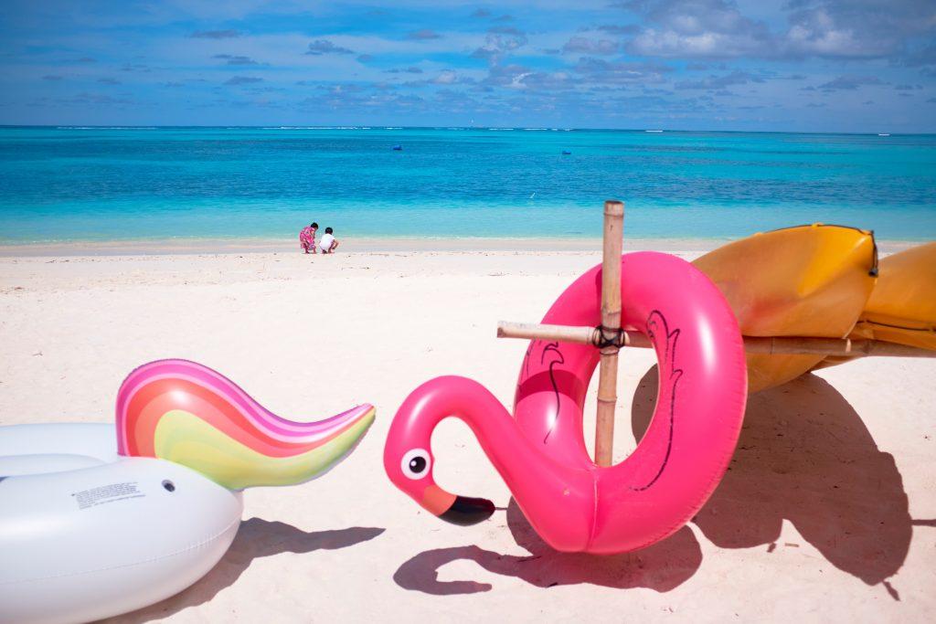 bouées gonflables de piscine flamant rose