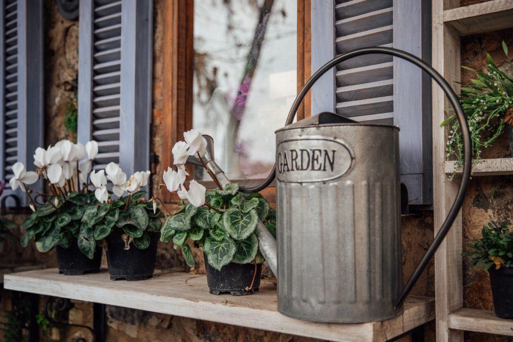 arrosoir avec pots de fleurs