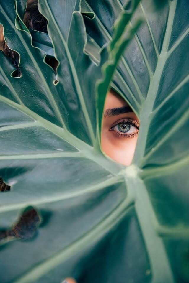 yeux feuille nature écologique beauté