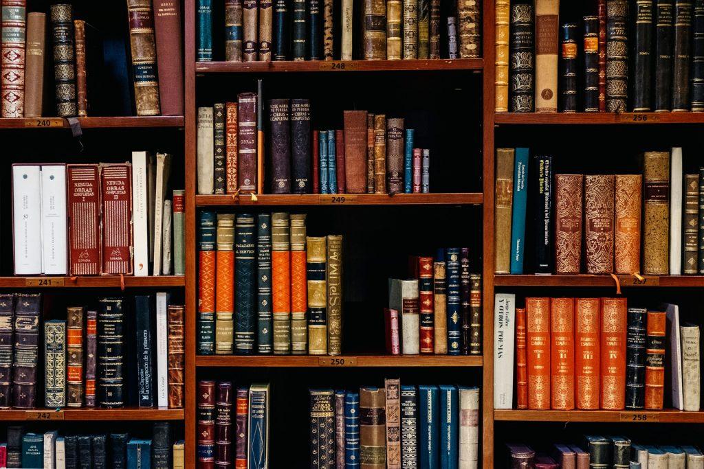 bibliothèque livres étagères