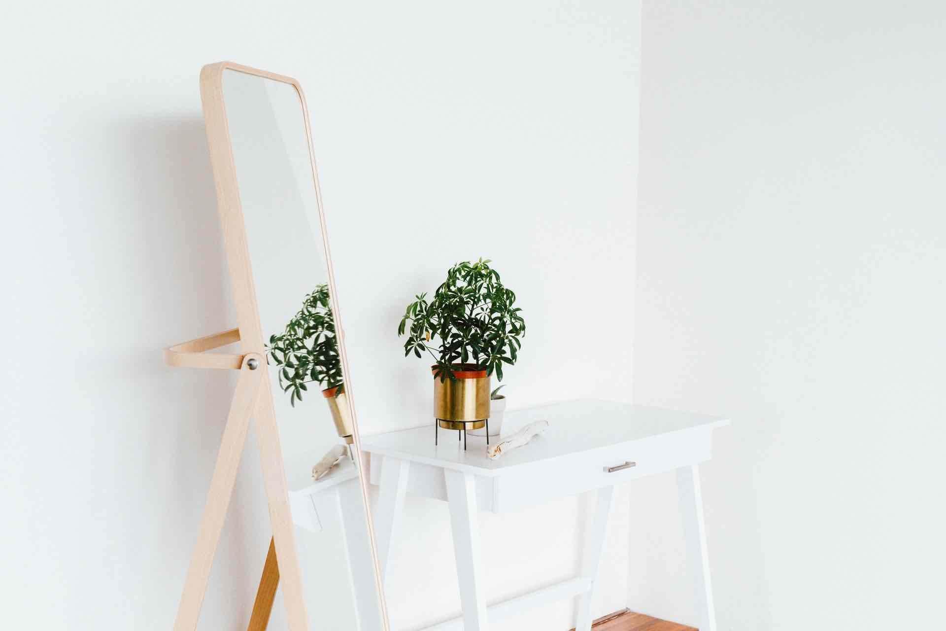 miroir décoration décor intérieur plante